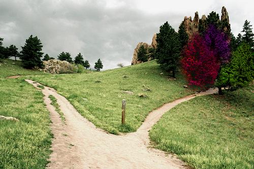 El sendero ancho y el angosto