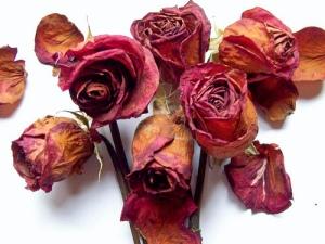 Flores marchitas