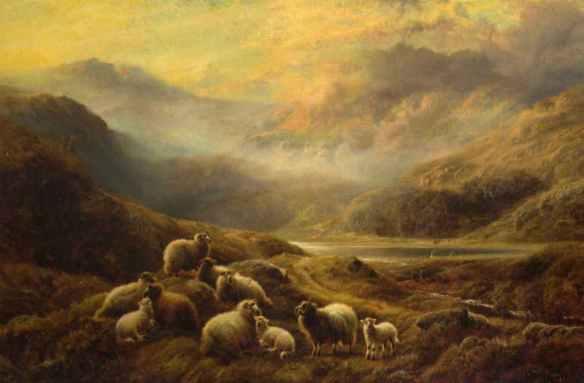 Sheeploch_Watson